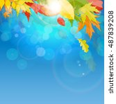 shiny autumn natural leaves... | Shutterstock . vector #487839208