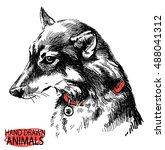 Dog Head   Wolf . Vector...