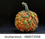 Unusual Warty Pumpkin For...