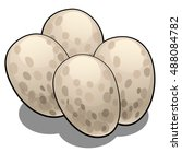 the eggs of reptiles isolated... | Shutterstock .eps vector #488084782
