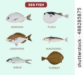 set of color flat sea fish... | Shutterstock .eps vector #488285875