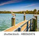 resting pelicans on a pier at... | Shutterstock . vector #488363476