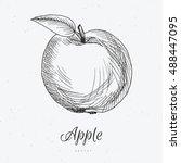 hand drawn apple | Shutterstock .eps vector #488447095
