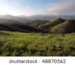 Lush Spring Grass In The Simi...