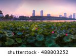 sunset above the lotus pond by... | Shutterstock . vector #488803252