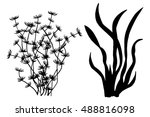 sea weed black silhouettes ... | Shutterstock .eps vector #488816098