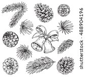 Collection Of Pine Cones And...