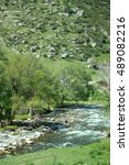Small photo of Mountain river in green valley. Poplar in floodplain. Altai mountains