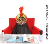 funny cat at the hairdresser.... | Shutterstock . vector #489091435