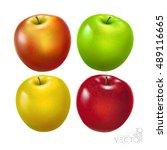 apples. red apple  green apple  ... | Shutterstock .eps vector #489116665