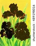 Three Black Irises  Hand...
