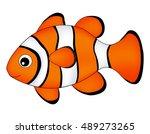 Reef Fish   Clown Fish Fish...
