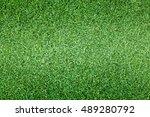 green grass background turf... | Shutterstock . vector #489280792