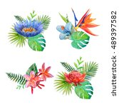 tropical flowers.jungle exotic... | Shutterstock . vector #489397582