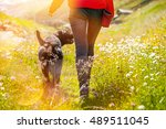 young woman with her dog... | Shutterstock . vector #489511045