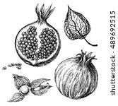 pomegranate set  hand drawings...   Shutterstock .eps vector #489692515