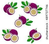 passion fruit set. vector | Shutterstock .eps vector #489737746