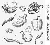 hand drawn pepper. vegetables.... | Shutterstock .eps vector #489770122