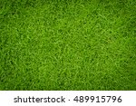 top view of green lawn | Shutterstock . vector #489915796