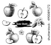 vector apples hand drawn sketch ... | Shutterstock .eps vector #490089172