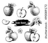 vector apples hand drawn sketch ... | Shutterstock .eps vector #490089172