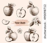 vector apples hand drawn sketch ... | Shutterstock .eps vector #490098712