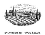 hand drawn vineyard landscape.... | Shutterstock .eps vector #490153606