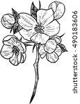 cherry blossom | Shutterstock .eps vector #490183606