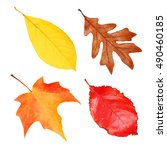 fall leaves collection isolated ... | Shutterstock . vector #490460185