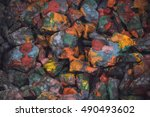 abstract background of the... | Shutterstock . vector #490493602