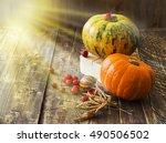 pumpkins  melon and red berries ... | Shutterstock . vector #490506502