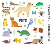 Stock vector vector colorful collection of domestic mammals rodents insects birds reptiles including dog 490569562