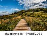 wooden footbridge on a mountain ...   Shutterstock . vector #490852036
