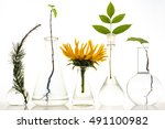 Five Laboratory Flasks With...
