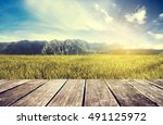 wooden terrace with green rice... | Shutterstock . vector #491125972
