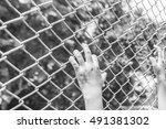 hand holding on chain link... | Shutterstock . vector #491381302