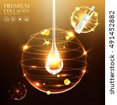 collagen premium serum and... | Shutterstock .eps vector #491452882