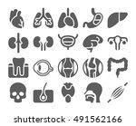 human organs black icons set | Shutterstock .eps vector #491562166