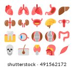 flat style medical icons with... | Shutterstock .eps vector #491562172
