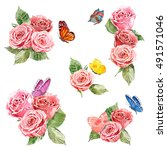 collection of lovely roses and...   Shutterstock . vector #491571046