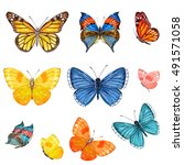 Collection Of Butterflies....