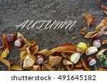 place for text natural... | Shutterstock . vector #491645182