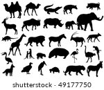 animal | Shutterstock .eps vector #49177750