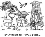 coloring page for adult   forest | Shutterstock .eps vector #491814862