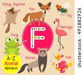 cute children zoo alphabet f... | Shutterstock .eps vector #491882926