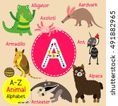 cute children zoo alphabet a... | Shutterstock .eps vector #491882965
