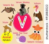 cute children zoo alphabet v... | Shutterstock .eps vector #491883022