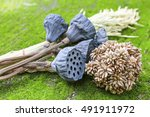 Dried Lotus And Hay On Green...