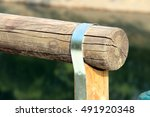 trunk isolated  cylindrical... | Shutterstock . vector #491920348