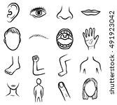 body parts  organ set  cartoon...   Shutterstock .eps vector #491923042